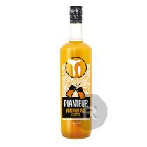 Les Rhums de Ced' - Ti Planteur - Ananas Coco - 1L - 12,9°