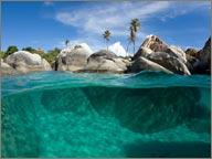 photo des fonds marins iles vierges britanniques