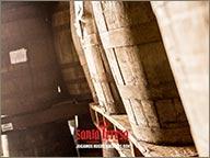 photo de logo santa teresa grave sur bois