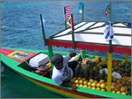 photo de boy boat a sainte lucie